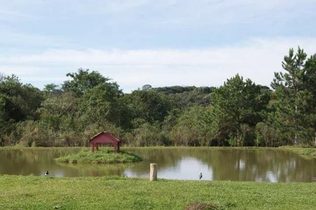 Aluga-se Chácara em Campo Largo para festas e eventos a 33 km do parque Barigui - Foto 8