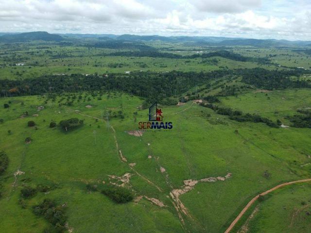 Fazenda à venda, por R$ 10.000.000 - Zona Rural - Presidente Médici/RO - Foto 4