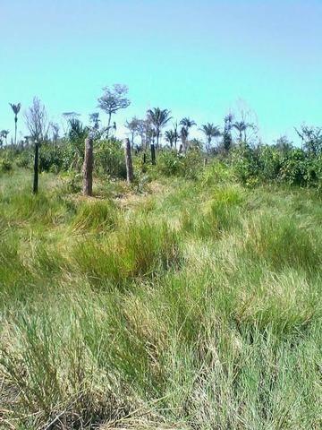 Fazenda em Luciara, MT - Foto 5