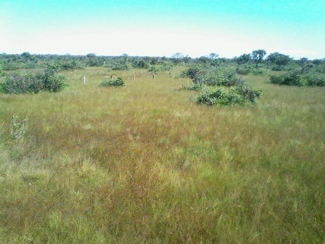 Fazenda em Luciara, MT - Foto 8