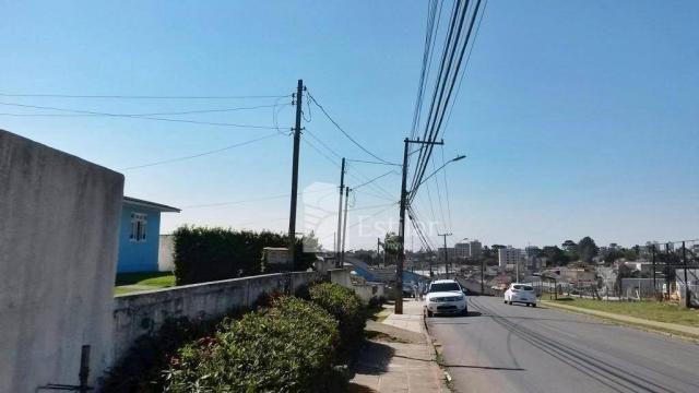 Terreno de 3.300m² na Colônia Rio Grande, São José dos Pinhais - Foto 8