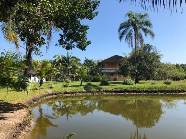 Chácara em Alexandra - Paranaguá na beira de rio com 2 casas + barco e veleiro - Foto 2