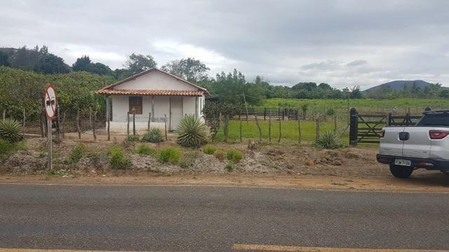 Sítio Irrigado Próximo ao Centro de Jequié com 40.000 m2 - Foto 12