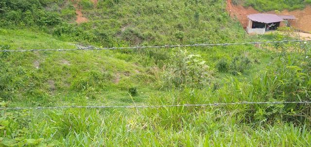 Vendo Chacara e lotes - Foto 10