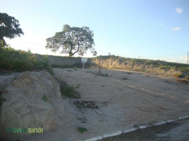 Terreno à venda, 367 m² por R$ 57.000,00 - Condomínio Privê Portal do Agreste - São João/P - Foto 2