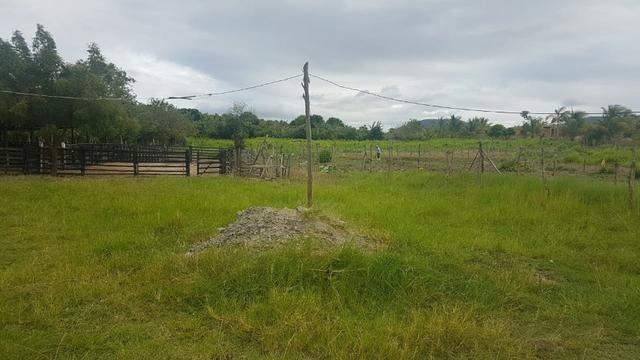 Sítio Irrigado Próximo ao Centro de Jequié com 40.000 m2 - Foto 5