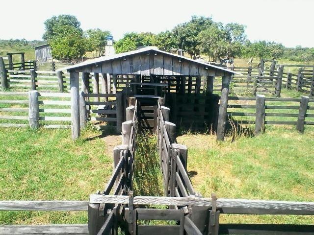 Fazenda em Luciara, MT - Foto 3