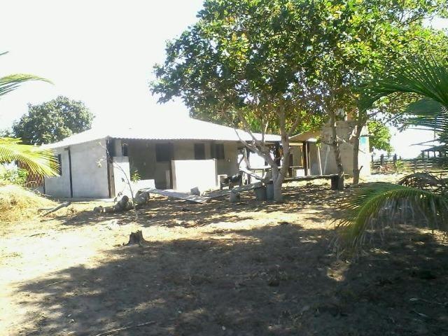 Fazenda em Luciara, MT - Foto 11
