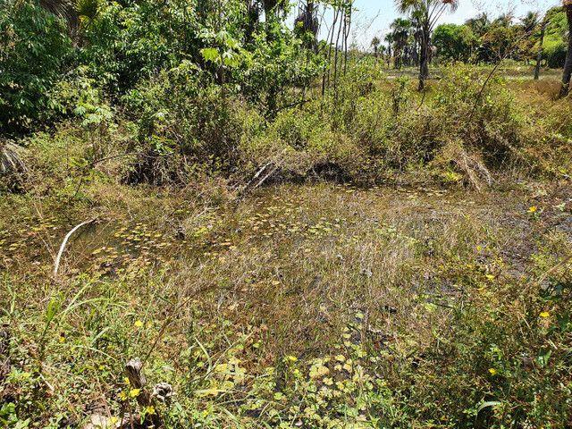 Sítio 5,3 ha em Timon a 13 km da ponte Metálica, com poço e lagoa - Foto 4
