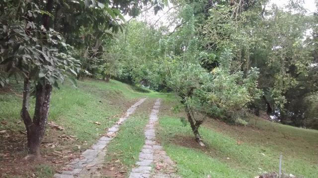 Jordão corretores - Ótimo sítio em Agrobrasil - Foto 10