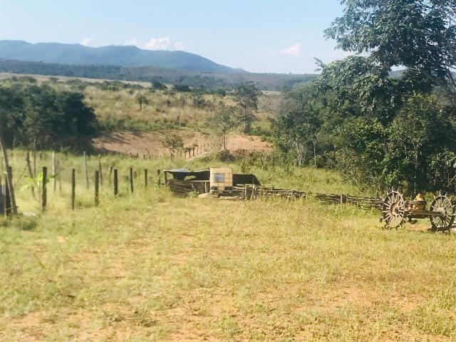 Fazenda 11 Alqueires Municipio Cocalzinho