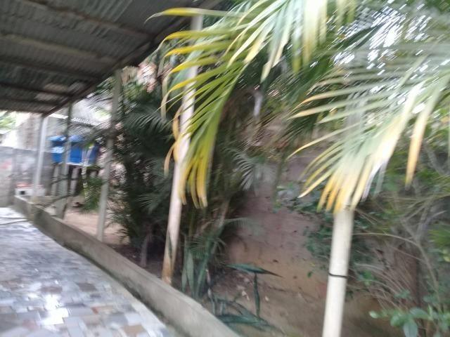 Pequeno sítio de 720 m2, todo plantado em Itambi - Foto 16