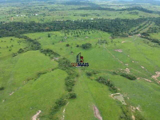 Fazenda à venda, por R$ 10.000.000 - Zona Rural - Presidente Médici/RO - Foto 13