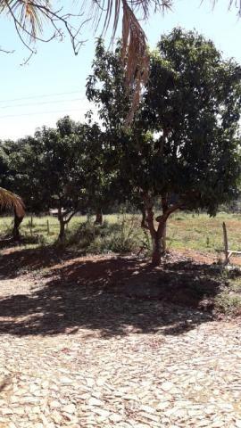 Fazenda à venda, 3 quartos, 3 vagas, Tamanduá - Sete Lagoas/MG - Foto 18