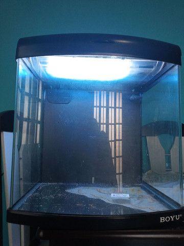 Aquario Boyu Mt-50 81 litros