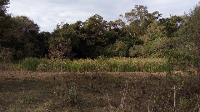 Fazenda/Sítio/Chácara para venda tem 121000 metros quadrados com 4 quartos em Rural - Pora - Foto 9