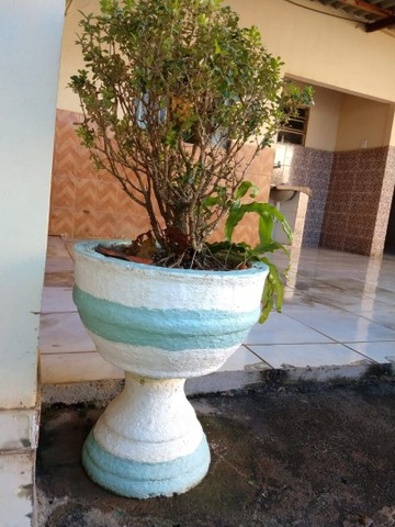 Vaso de planta. - Foto 5
