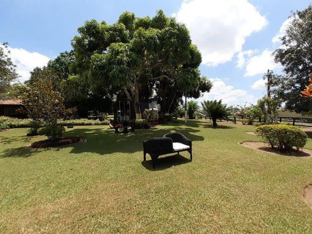 Propriedade com 14 hectares em Sairé (Cód.: fvv56) - Foto 18