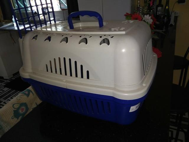 Casinha pra transportar cachorrinhos
