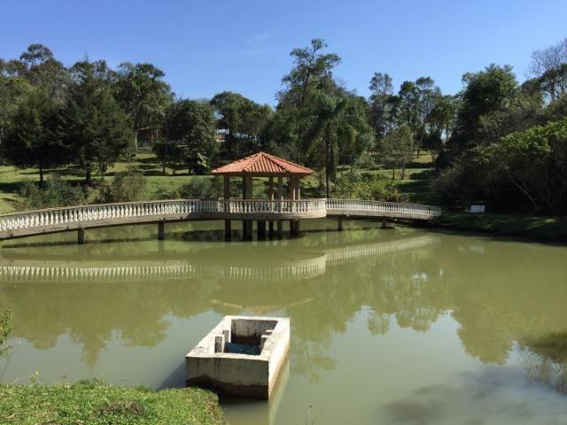 Chácara em Tijucas do Sul - Excelente - Cinco Alqueires - D115 - Foto 3