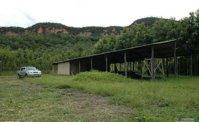 Fazenda serrana, vista para Cachoeira é muita água - Foto 3