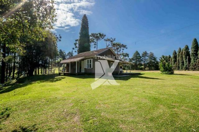 Chácara com 1 dormitório à venda, 60500 m² por r$ 599.000,00 - centro - colombo/pr - Foto 15