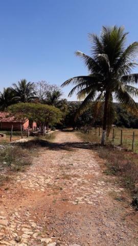 Fazenda à venda, 3 quartos, 3 vagas, Tamanduá - Sete Lagoas/MG - Foto 17