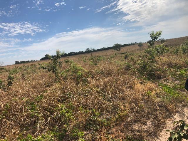 2750 Hectares x Campo Grande,Pecuária e Lavoura,Comodoro-MT Ótimo localização - Foto 2