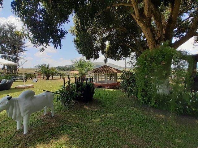 Propriedade com 14 hectares em Sairé (Cód.: fvv56) - Foto 17
