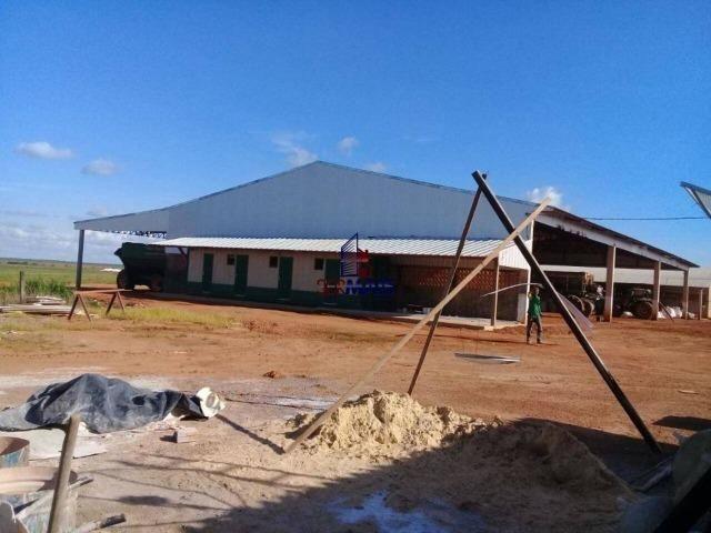 Fazenda à venda, por R$ 220.000.000 - Zona Rural - Sinop/MT - Foto 5