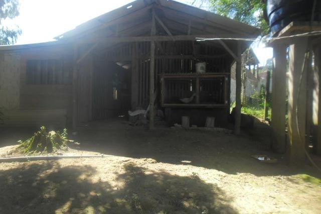 Vende-se chácara em Areia Branca dos Assis - Mandirituba (cód. A199) - Foto 7