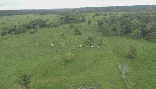 Fazenda Próxima de Rio Branco - Foto 3