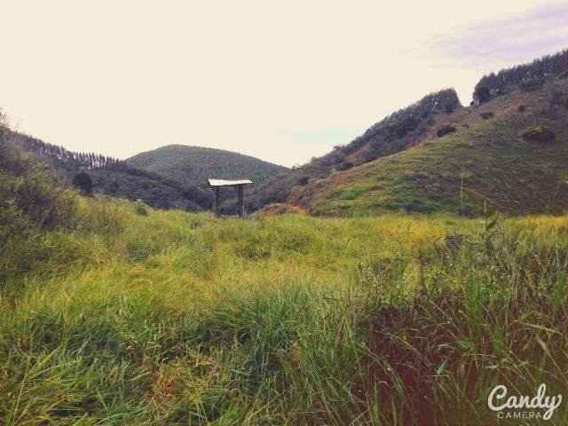 Fazenda Muito Boa na Região Veja a Descrição - Foto 12