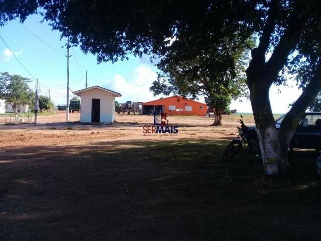 Fazenda à venda, por R$ 220.000.000 - Zona Rural - Sinop/MT - Foto 7