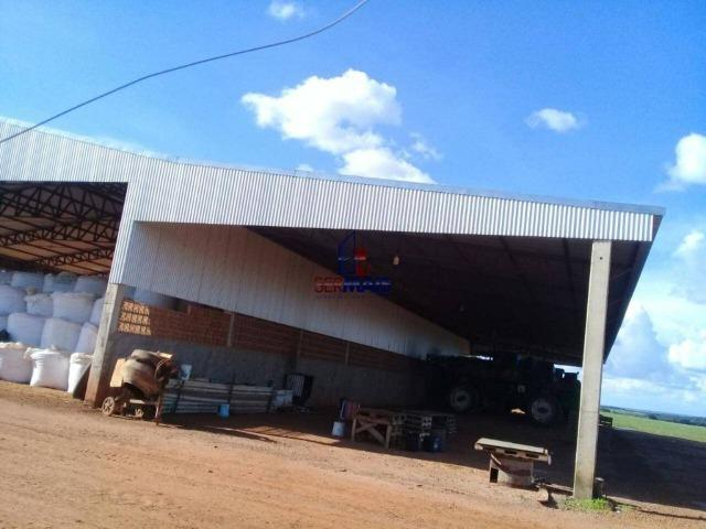 Fazenda à venda, por R$ 220.000.000 - Zona Rural - Sinop/MT - Foto 6