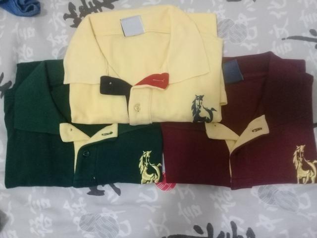 83c1ed1fd0 Camisa polo - Marca Club Polo - SÓ HOJE - 20 reais cada - Roupas e ...