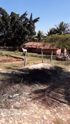 Fazenda à venda, 3 quartos, 3 vagas, Tamanduá - Sete Lagoas/MG - Foto 7