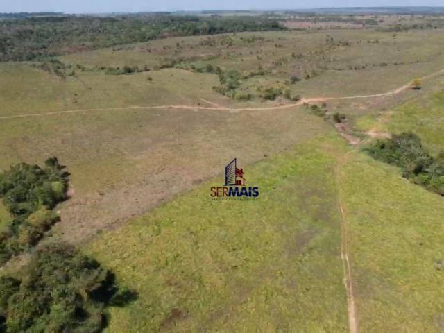 Fazenda rural à venda, á margem da BR 364, Cacoal. - Foto 14
