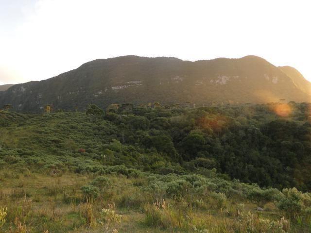 Pense num lugar bonito, sitio 5 hectares a 1000 m de altitude - Foto 8
