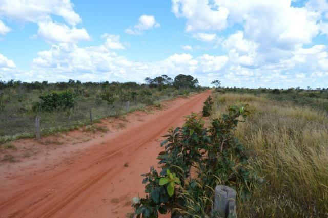 7800 hectares, Primavera do Leste-MT - Foto 2