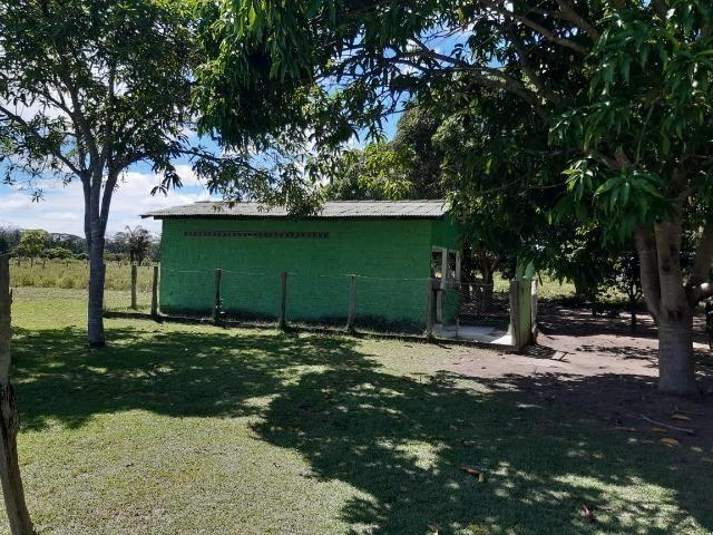 Fazenda com 160 hectares em Mucajai/RR, ler descrição do anuncio - Foto 5