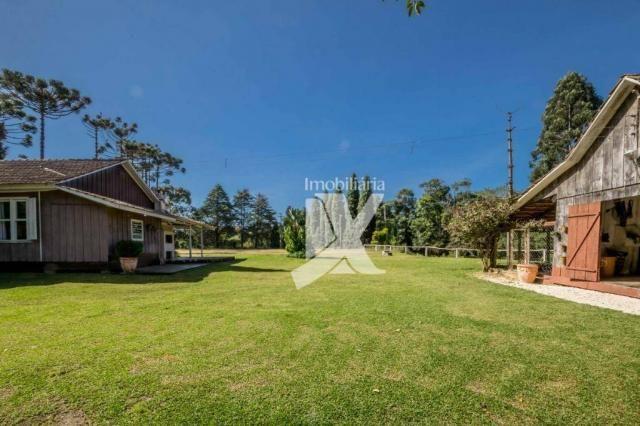 Chácara com 1 dormitório à venda, 60500 m² por r$ 599.000,00 - centro - colombo/pr - Foto 16