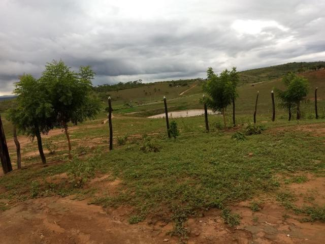 Fazenda 172 tarefas de terra com sede para criaçao de gado e cavalo e plantaçao - Foto 4