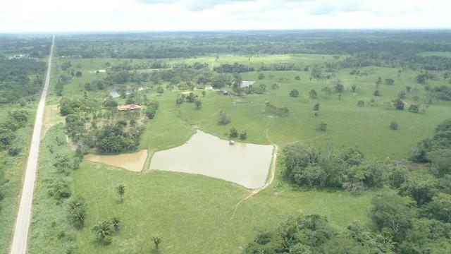 Fazenda Próxima de Rio Branco