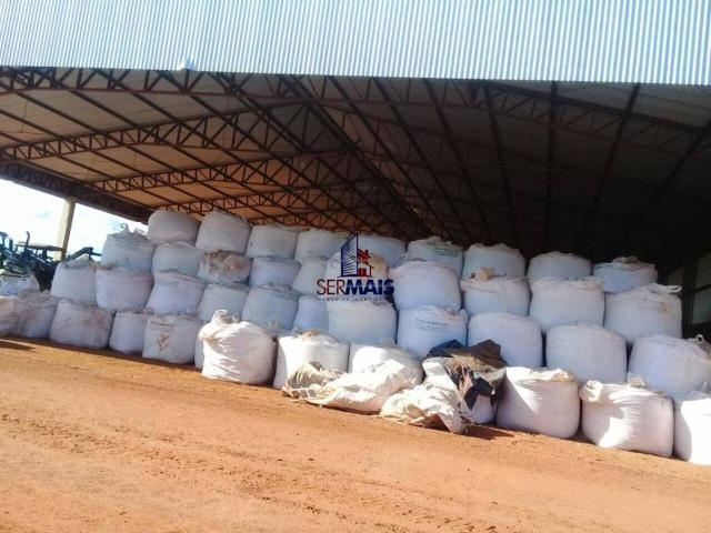 Fazenda à venda, por R$ 220.000.000 - Zona Rural - Sinop/MT - Foto 4