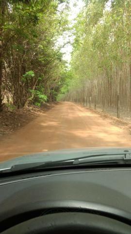 Aceito permutas - Chácara em Trindade - 1.475m - a 2km do asfalto - 11km de Trindade - Foto 5