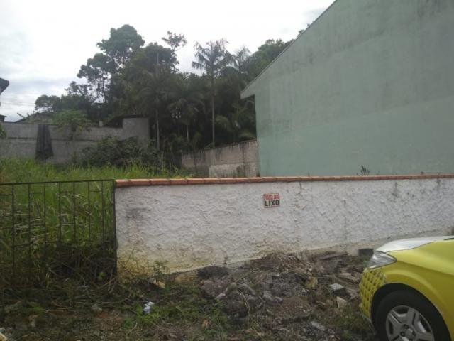Terreno para alugar com 0 dormitórios em Joao costa, Joinville cod:08769.001 - Foto 5