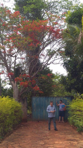 Chaçará Residencial de Chacaras Itanhangá - Foto 17