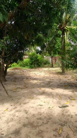 Vendo Granja em Monte Alegre- Casa sede com 3 quartos- Com dependência - Foto 2