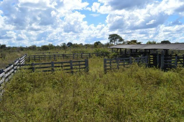7800 hectares, Primavera do Leste-MT - Foto 8